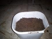pote-com-terra-e-areia-dsc00285
